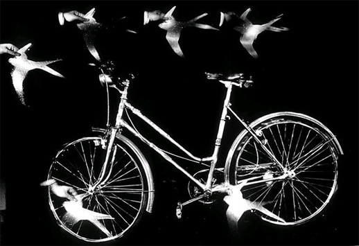 2007051900_blog.uncovering.org_fotografia_bavcar_bicycle_with_swallows.jpg