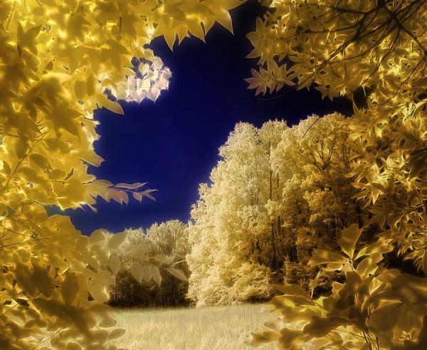 photography infrared HDR nature landscape
