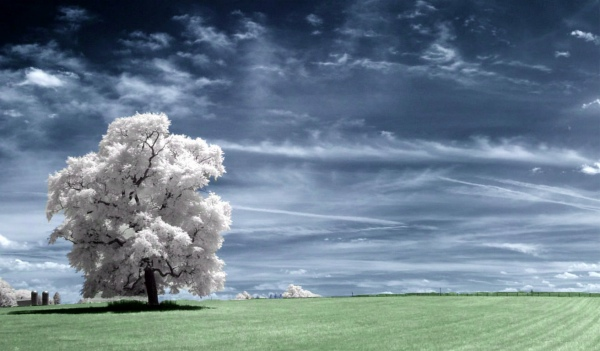 photography light infrared oniric
