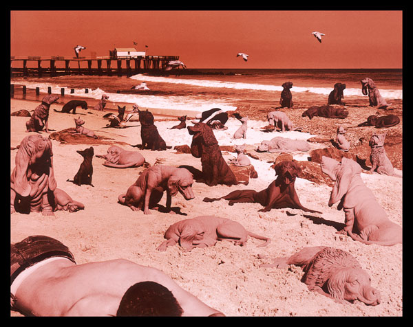 07_DOGS-ON-THE-BEACH-©-1992-Sandy-Skoglund.jpg