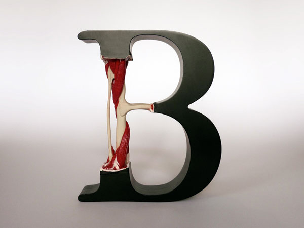 04_EvolutionOfType_Exhibit9_b_04.jpg