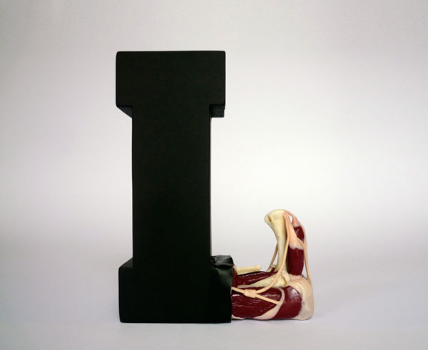 08_EvolutionOfType_Exhibit18_a_08.jpg