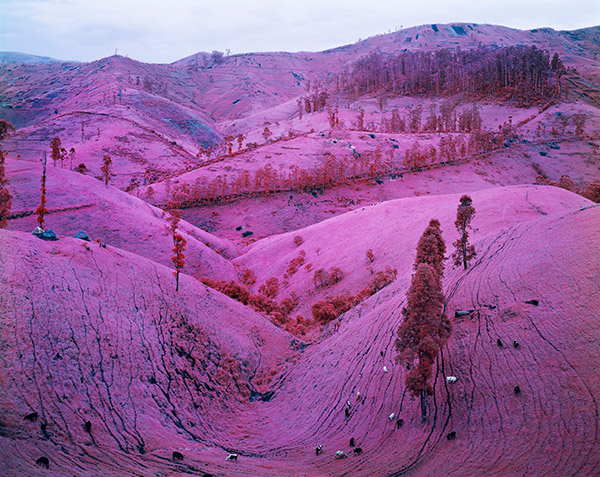 02_RichardMosse02_02.jpg