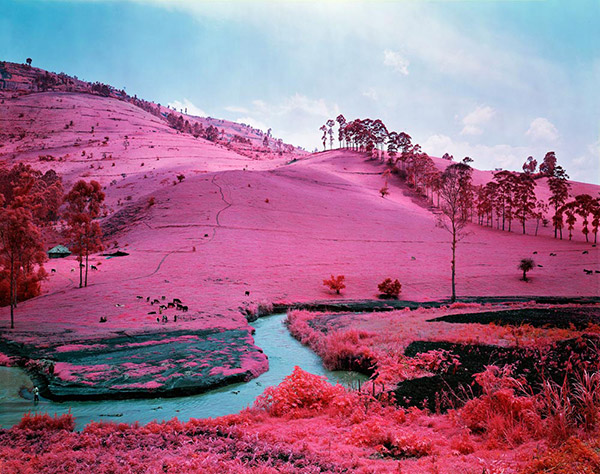 03_richardmosse03_03.jpg