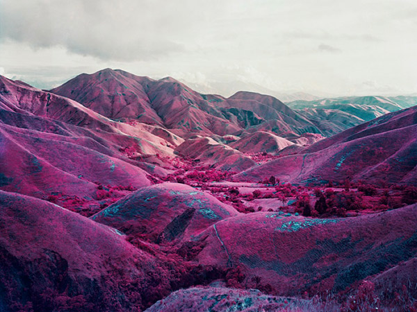 13_RichardMosse14.jpg