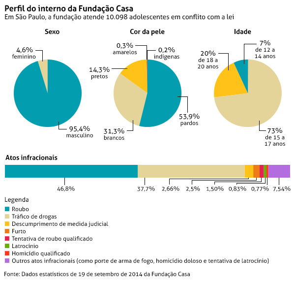 grafico-perfil-do-interno-da-fundacao-casa-1412020694537_600x571.png