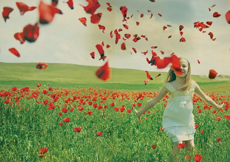 menina_no_campo_petals_on_the_wind_by_lily_m__deviantart1.jpg