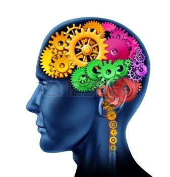 Thumbnail image for 10503773-brain-sections-made-of-cogs-and-gears-representing-intelligence-and-divisions-of-mental-neurological.jpg