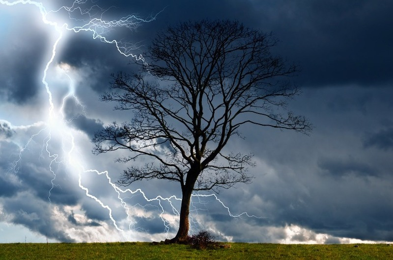tree-and-storm-2.jpg