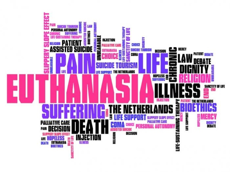 words-associated-with-euthanasia.jpg