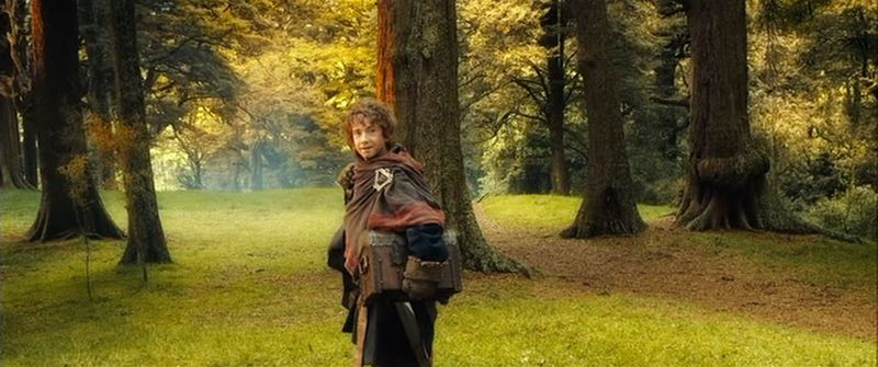 (TBOTFA) Bilbo's back in the Shire 2.JPG