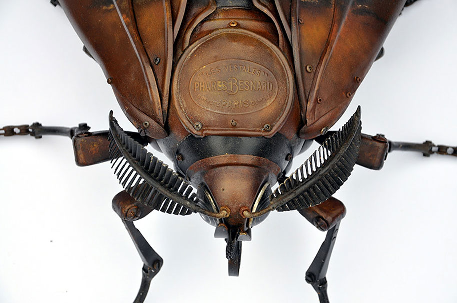 insect-sculptures-edouard-martinet-8.jpg