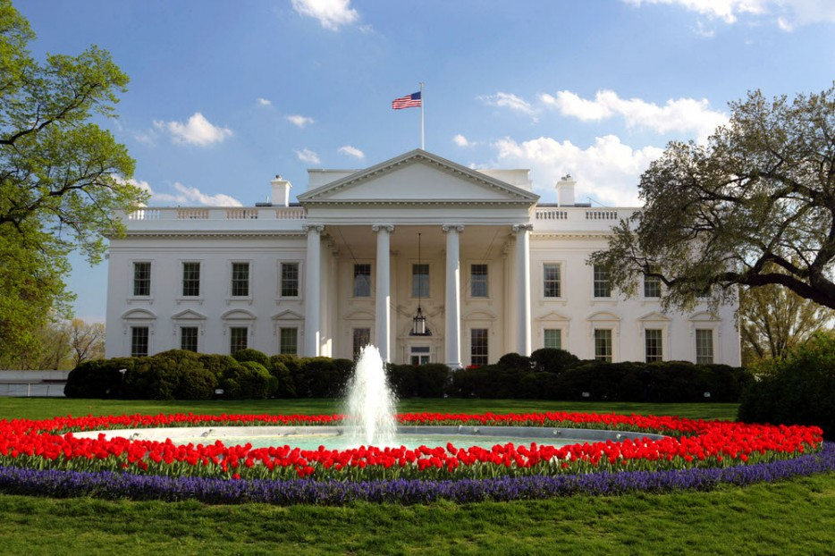 The White House1.jpg