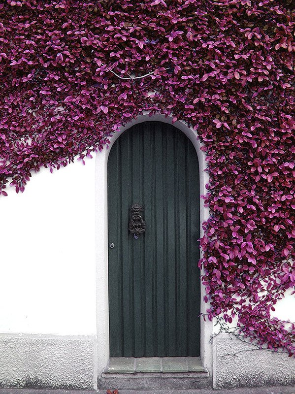Most Beautiful Doors Around The World012.jpg